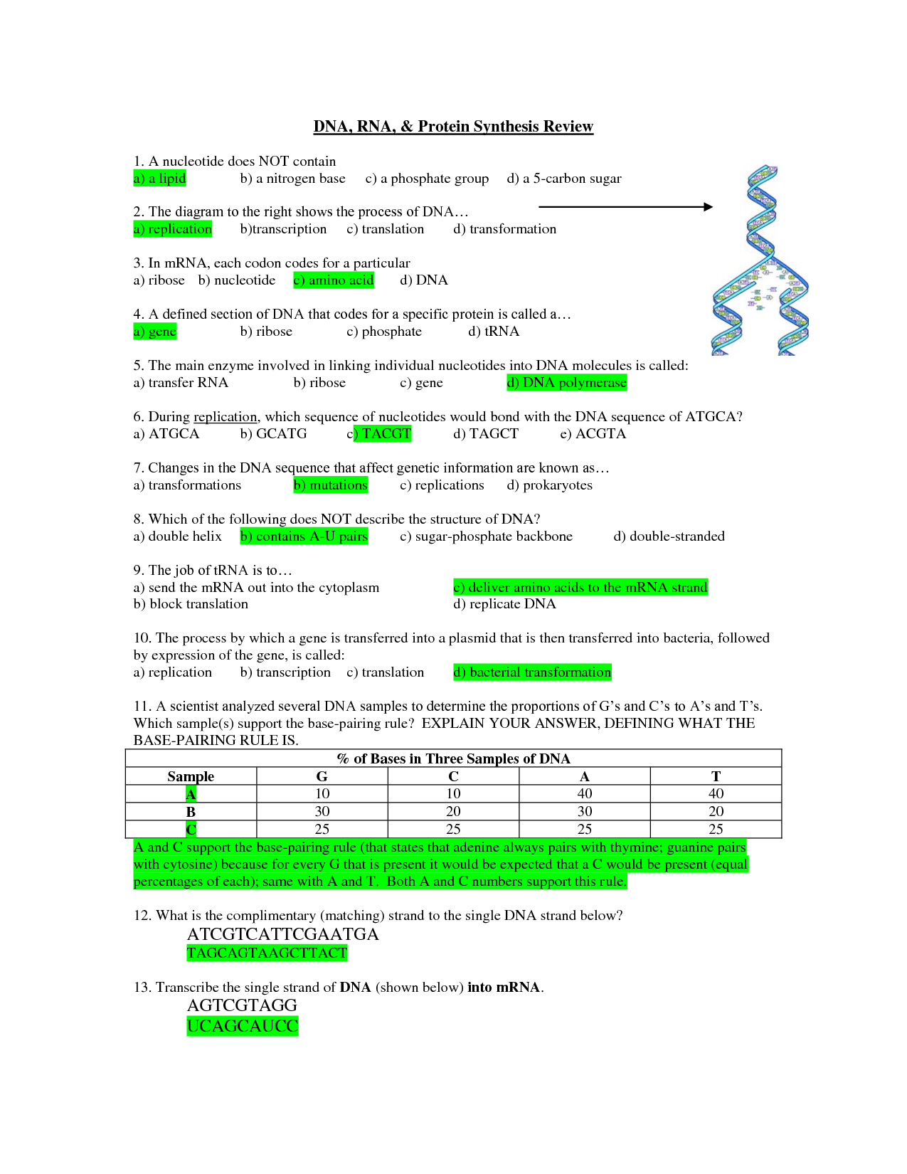 Dna Rna And Protein Synthesis Test Biological Science