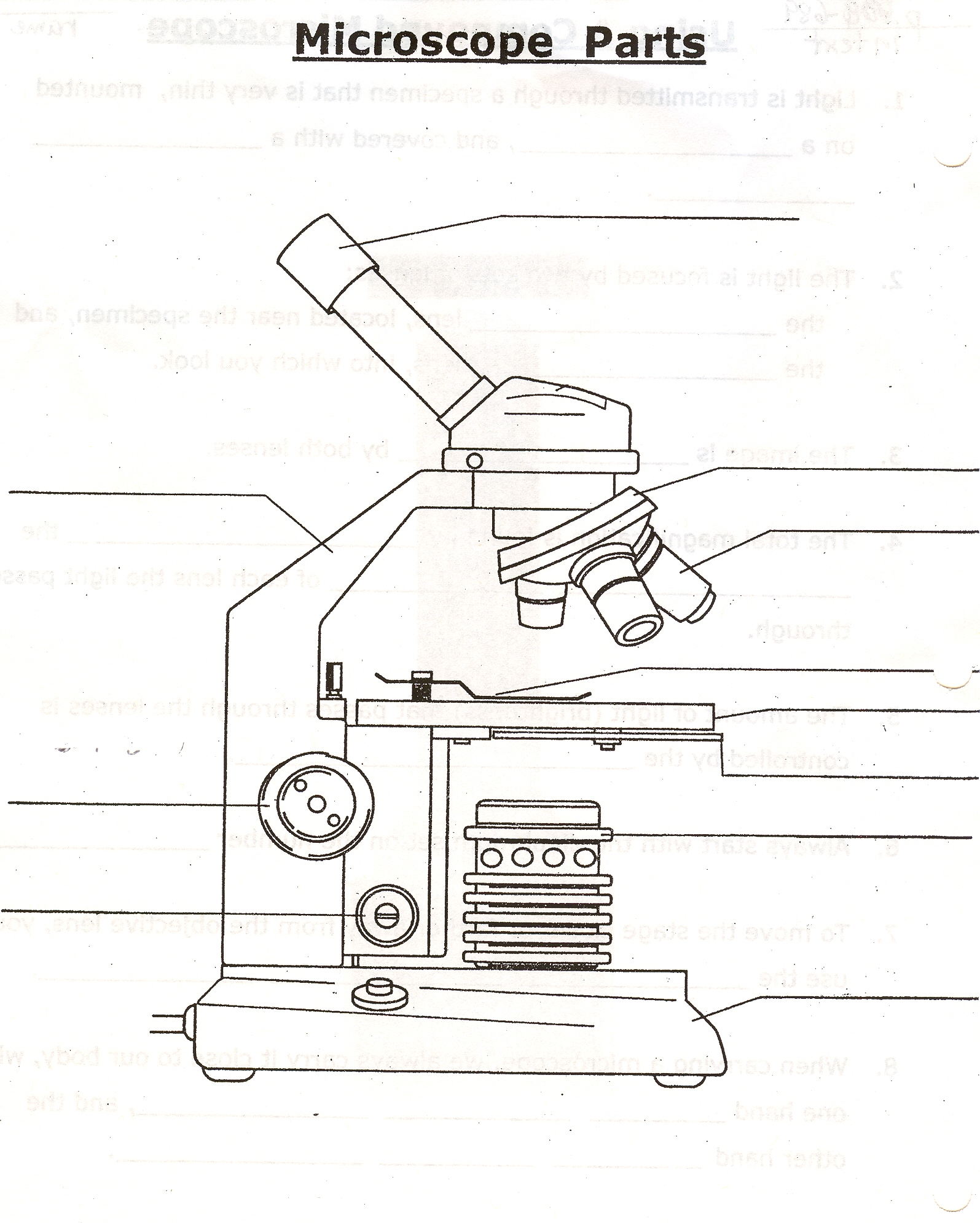 Uncategorized Microscope Labeling Worksheet Waytoohuman