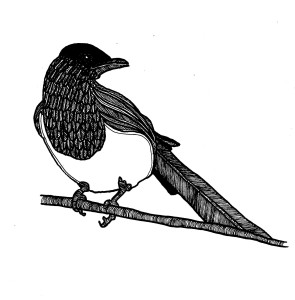 incidental magpie 2