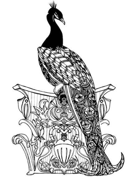 peacocksmall