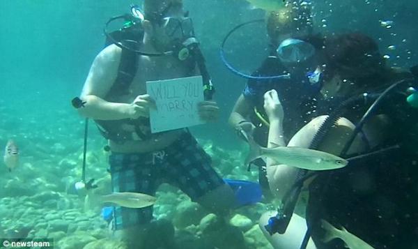 scuba-proposal