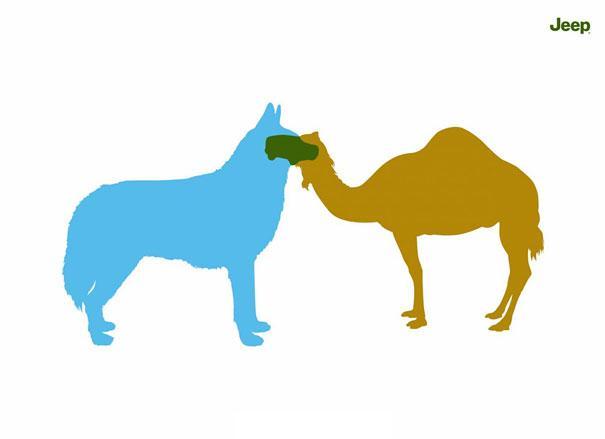 Jeep: Husky & Camel