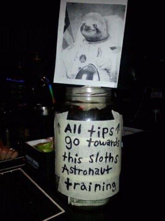 these-tip-jars-will-definitely-get-money-13