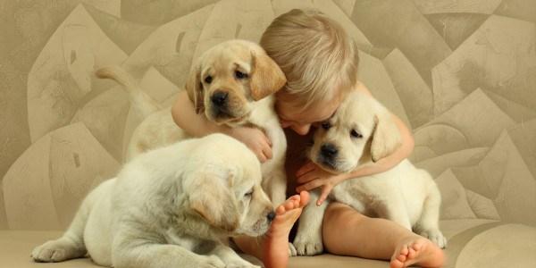 Oxytocin Released When Petting Dog