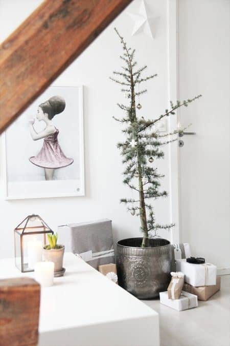 not all christmas trees have to be lush and thick just add a few decorations to a potted plant you already have