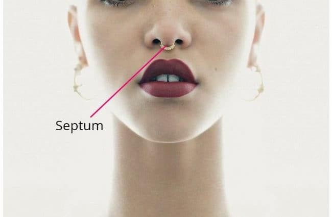 The Ultimate Guide To Septum Piercings