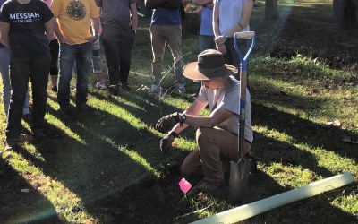 Groundbreaking Greenery: 180 New Trees Planted on Campus