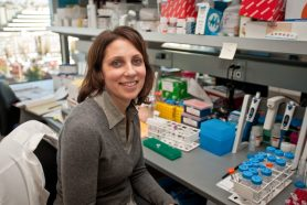 Neuroscientist Dr. Susan Ferguson's use of innovative tools like optogenetics gives insight into the brain circuitry of addiction and could lead to better treatments.
