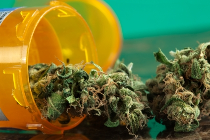 More kids accidentally poisoned by legal marijuana, study finds