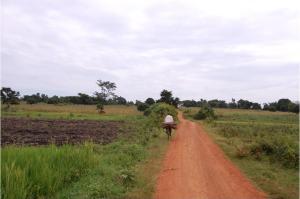 Uganda Road