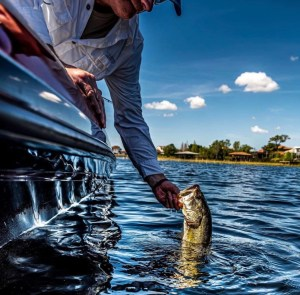 Favorite Places To Catch Some Fish in Central Florida