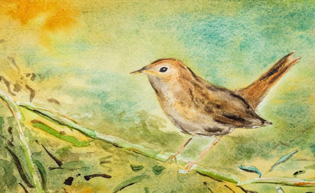 Nightingale White