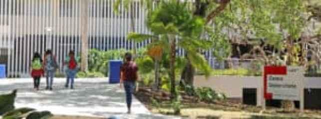 Recinto de Río Piedras de la UPR ofrecerá servicios de apoyo a los estudiantes