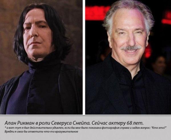 Герои кинологии Гарри Поттер тогда и сейчас | PulsON — все ...