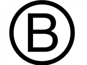 Empresas-B