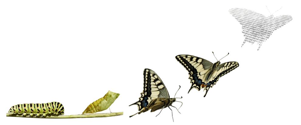 Transformación digital - Onmarc