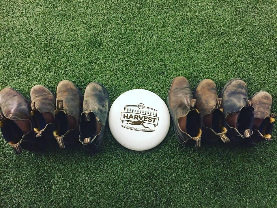 Frisbee score with burkinstocks