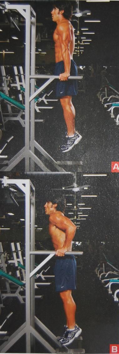 Otzhimanija-dlja-tricepsa