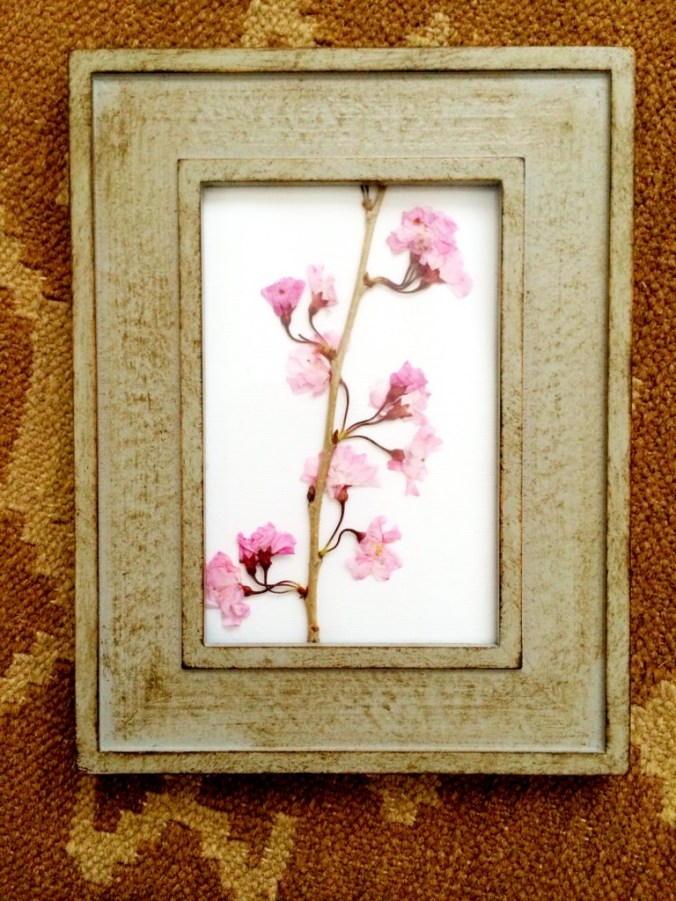 pressed flower finished product vertical blog pic