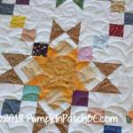 Granny's Stars Detail 2