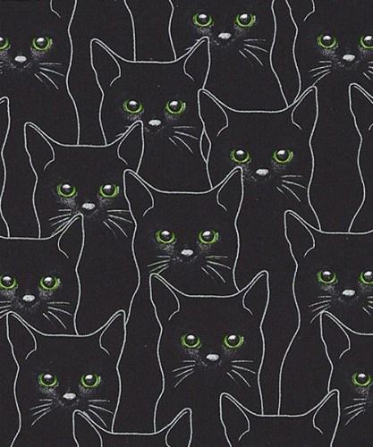 Full Moon Cats