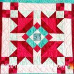 365 Challenge Quilt Detail 1