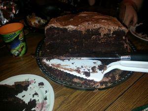 Grain Free Chocolate Macaroon Cake