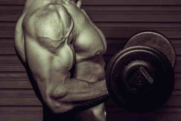 testosteron spiergroei vetverlies