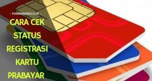 Cara Cek Status Registrasi Kartu Prabayar Indosat, Telkomsel, Three, dan XL