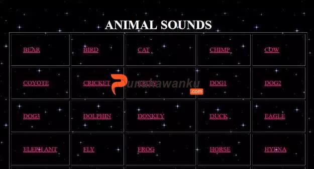 Sounds & Noise