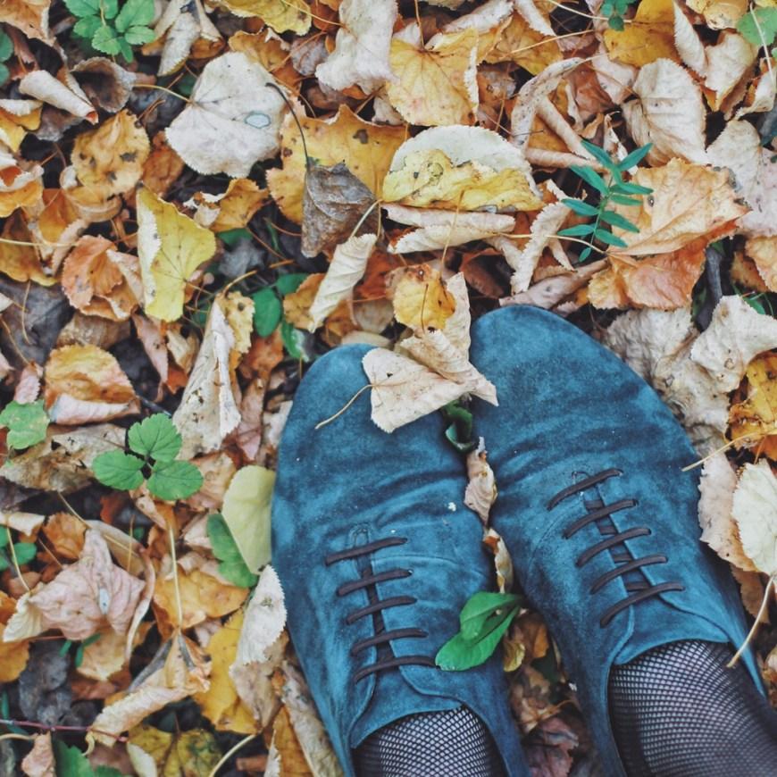Что мне нравится в осени