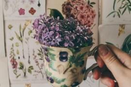 Ботанические распечатки