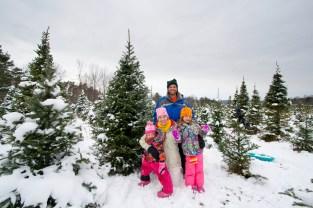 Christmas Tree 2014 - 3