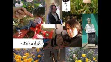 Sebadoh — Keep The Boy Alive