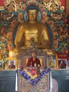 Mingyur Rinpoche at Tsoknyi Gesak Ling