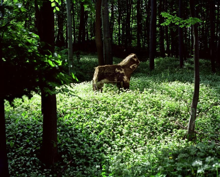 Gyenis Tibor: Vidéki kirándulás, május 15. / Countryside Excursion, 15th May 2003-2004, lambda print on wood, 80 x 100 cm