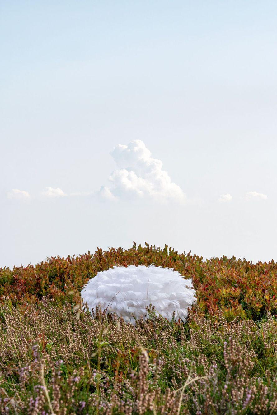 Fotó:<b> Ute Behrend</b>: Series: Back to Nature