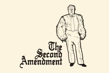 second ammendment, bear pun, right to bear arms, right to bare arms