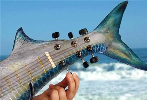 Tuna fish, tuning fish guitar pun