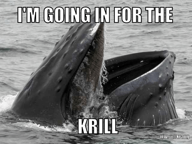 Going in for the krill pun, whale pun