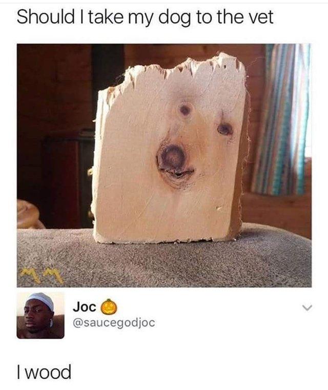 dog/wood pun