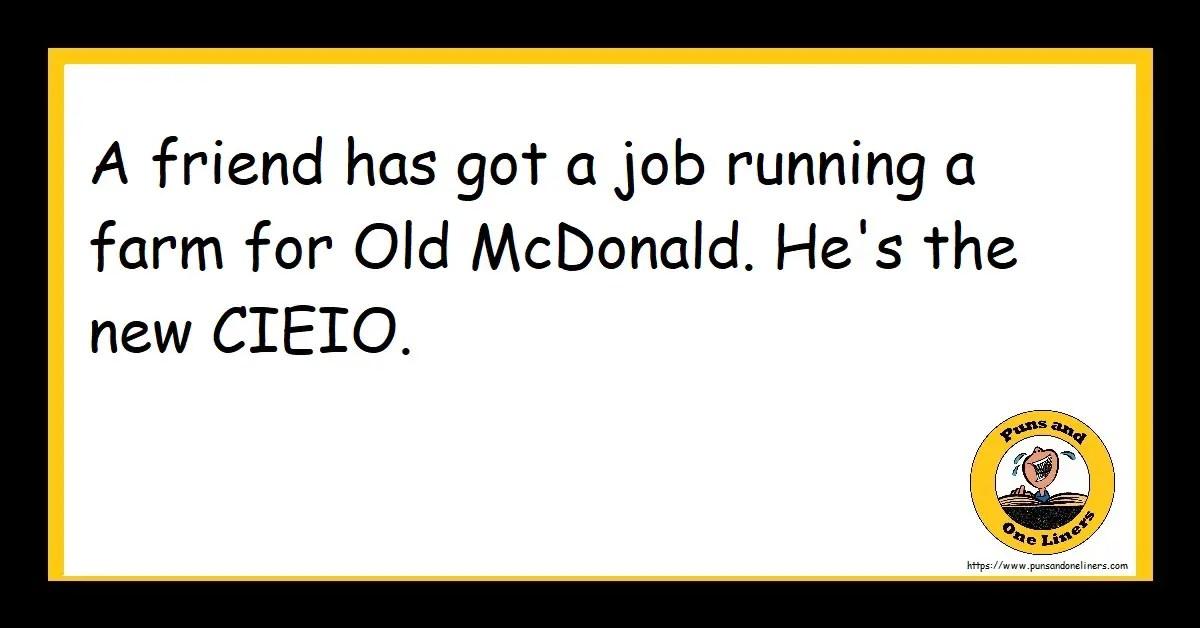 A friend has got a job running a farm for Old McDonald. He's the new CIEIO.