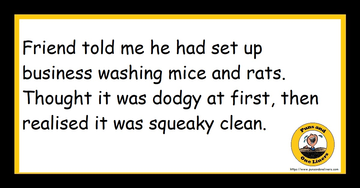 Friend told me he had set up business washing mice and rats. Thought it was dodgy at first, then realised it was squeaky clean.
