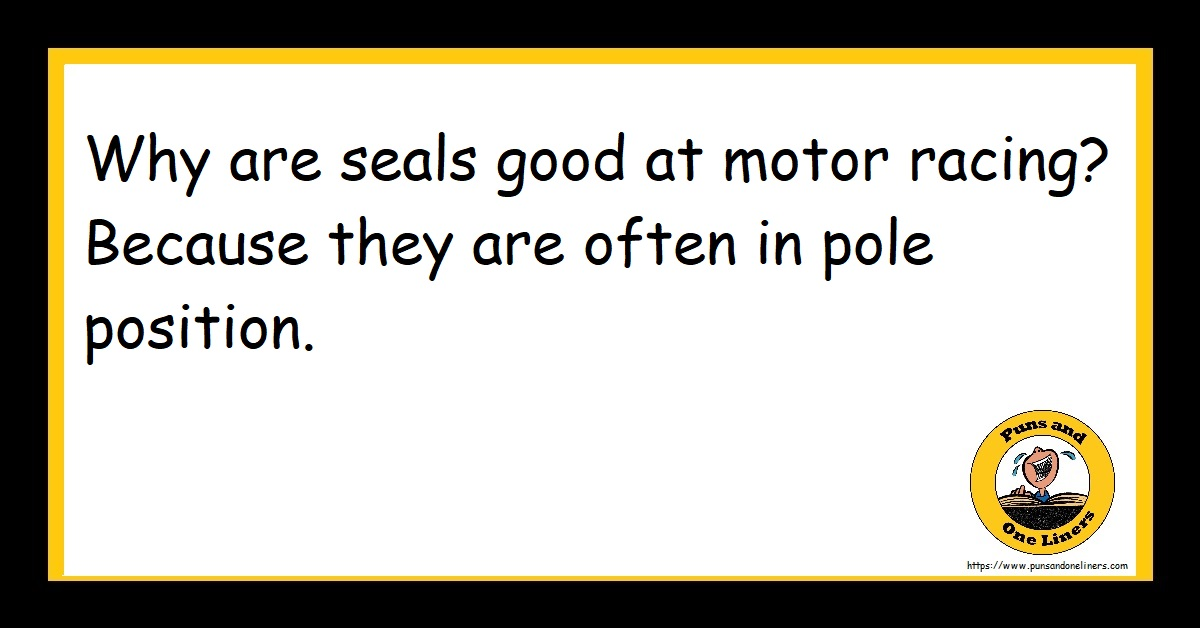 Why are seals good at motor racing? Because they are often in pole position.