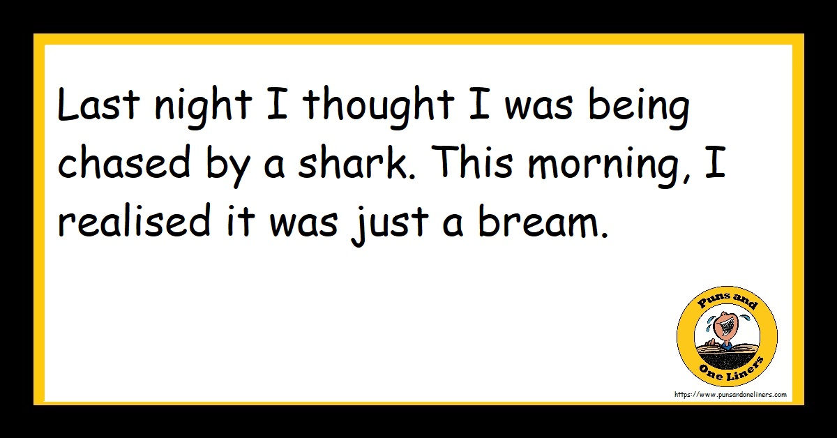 Last night I thought I was being chased by a shark. This morning, I realised it was just a bream.