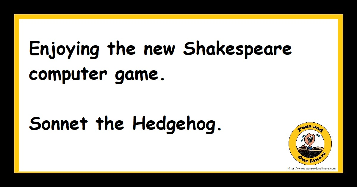 Sonnet the Hedgehog Computer Game