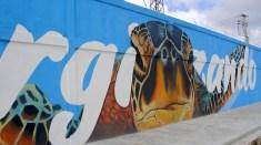 mural_cepm
