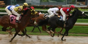 Rain Race Wet Weather Conditions Mud Horse