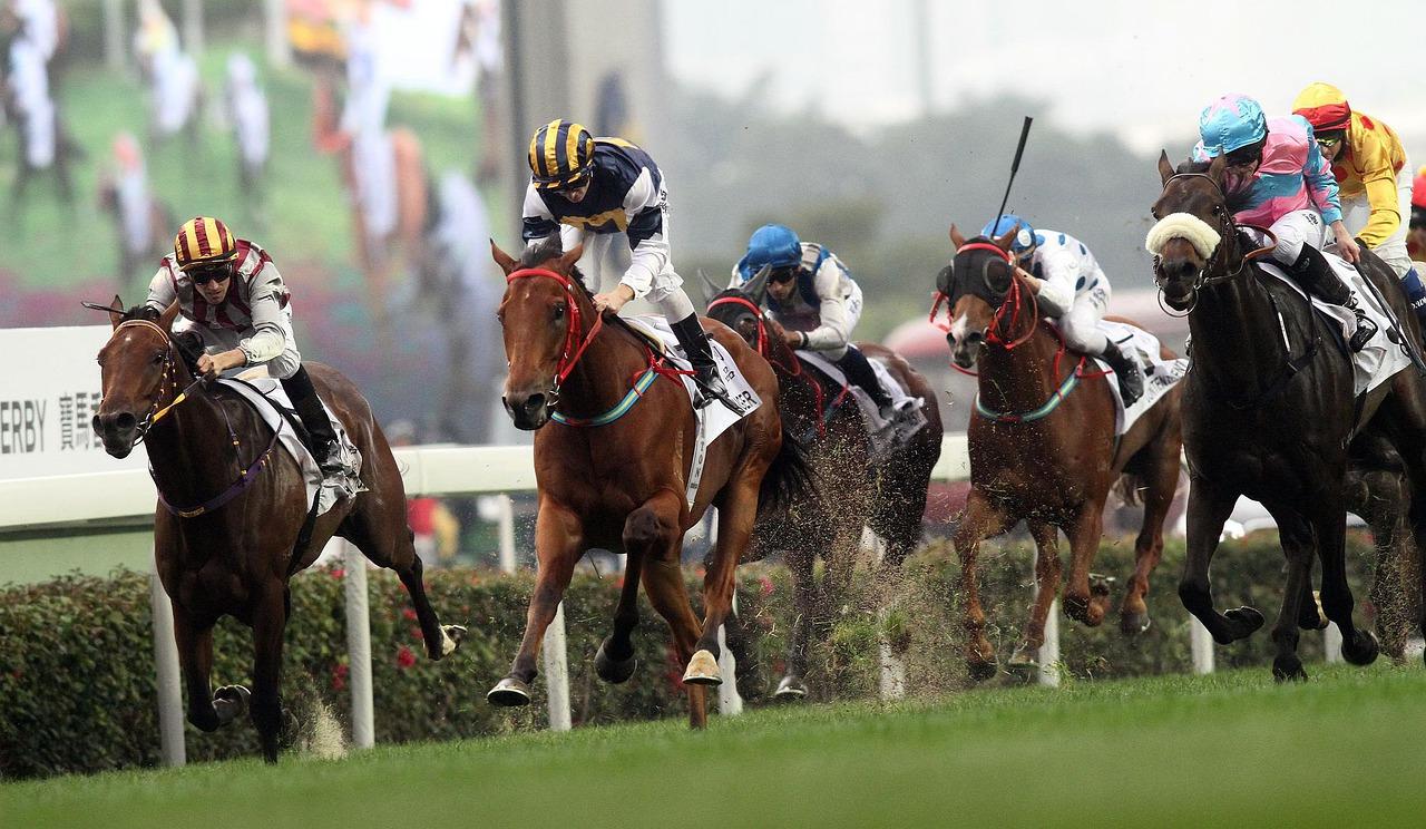 Betting each way on horse nba betting