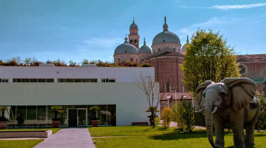 visita all'orto botanico di padova: il giardino della biodiversità